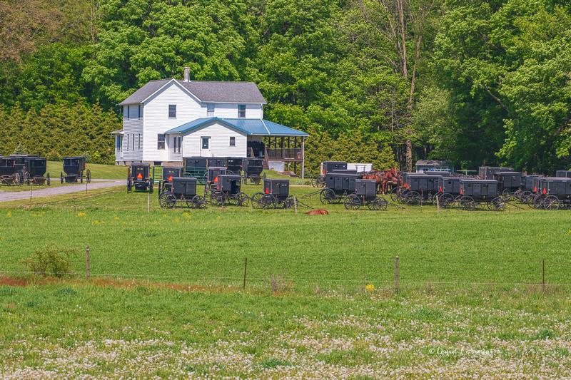 Amish Church 202105 _DSC2582 copy