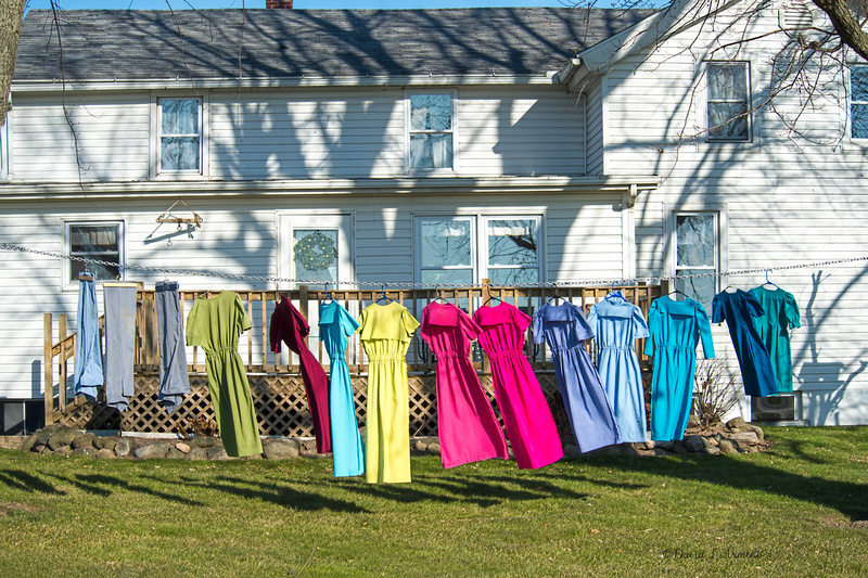 clothes on the line in winter 20171203 _DSC8046