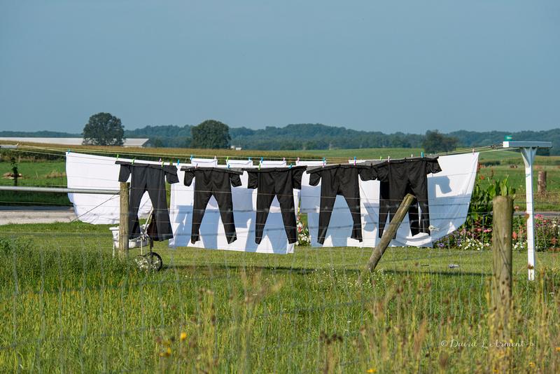 Amish clothesline 20210828 _DSC4039 copy