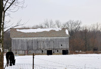 Barn and Horse in Winter