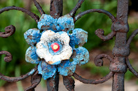 Flower on Fence