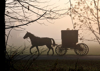Amish Buggy in the Fog, Small Buggy, Orginal File