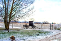 Lone Buggy in Winter