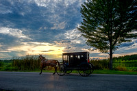amish buggy at lake at sunset 20170814 _DSC7165