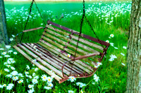Chairs, Swing in Flowers Series