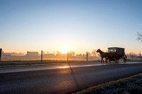 amish buggy at dawn 20171203 _DSC1685