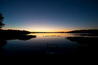 geese on lake at night 20180702 _DSC5818
