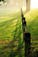 Split Rail Fence on Foggy Morning