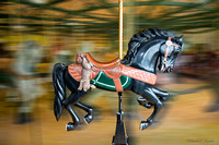 Hunter, Black Carousel Horse