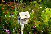 Birdhouse in Flower Garden