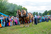 tug o war horse vs children 20170908 _DSC9845